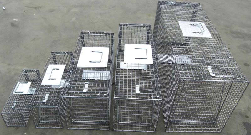 Live Animal Traps/Live Animal Catchers